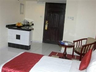 Отель Al Maha Regency Suites 3*, Шарджа - фото 12